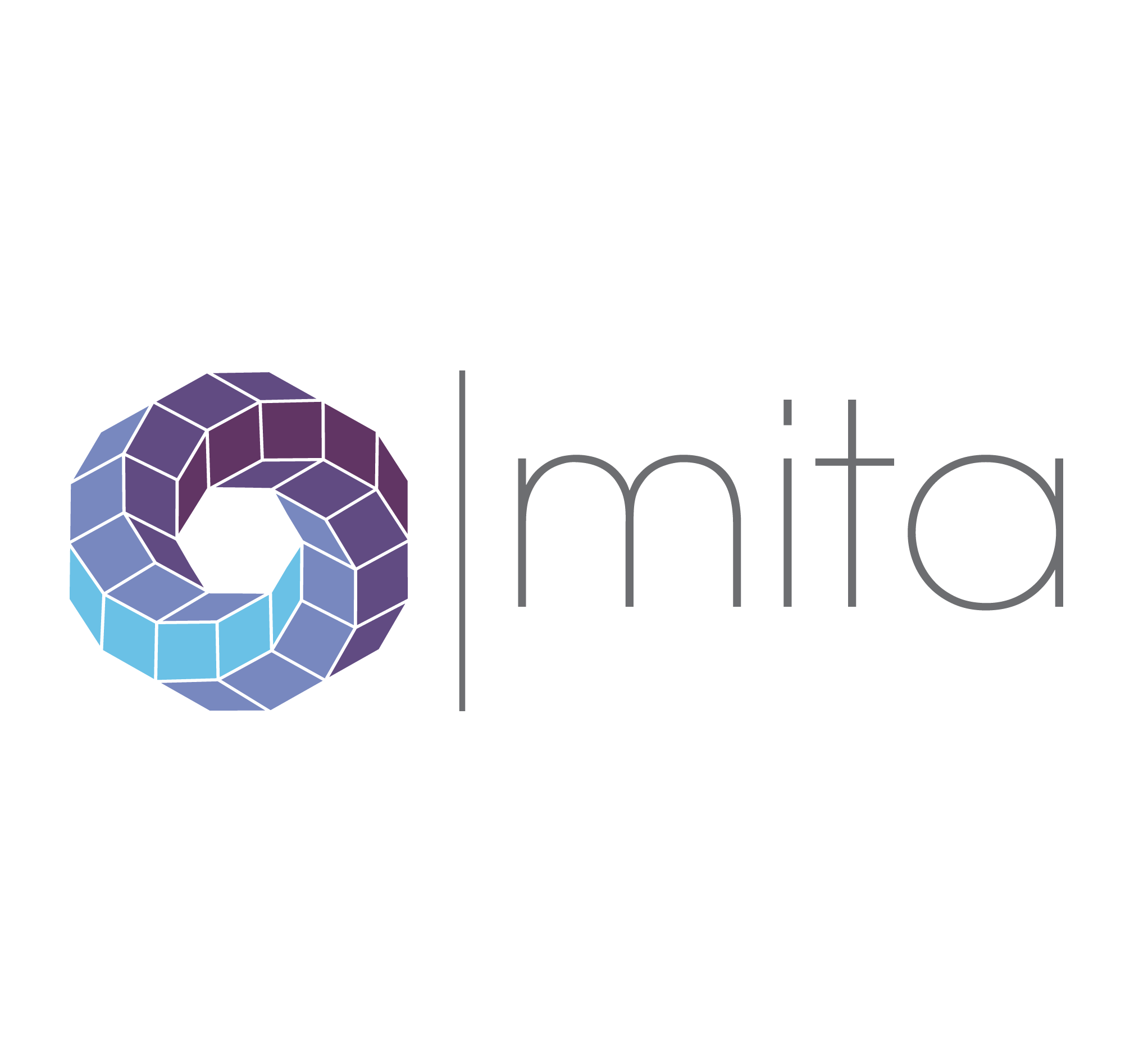 mita_logo softneta medical imaging solutions