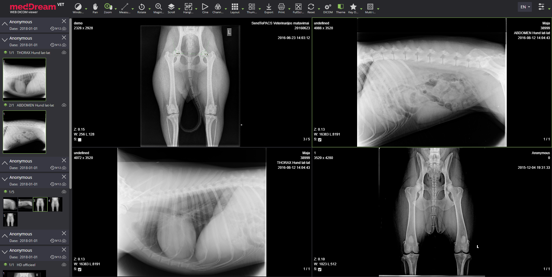 Meddream Vet Dicom Viewer Radiology